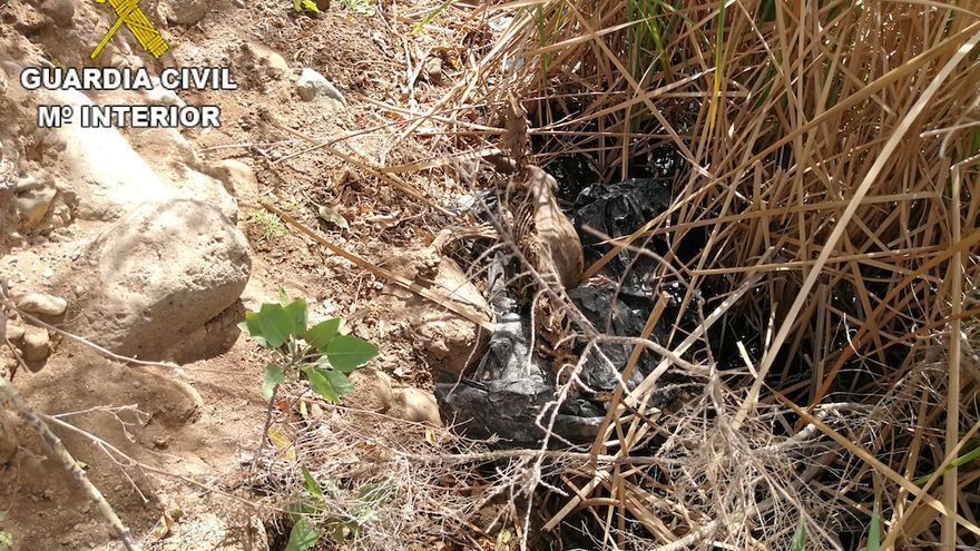 Encontrados varios animales sin vida en los alrededores de una perrera de Santa Lucía de Tirajana.