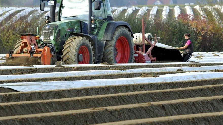 Más de una de cada cuatro granjas desapareció en la UE entre 2003 y 2013