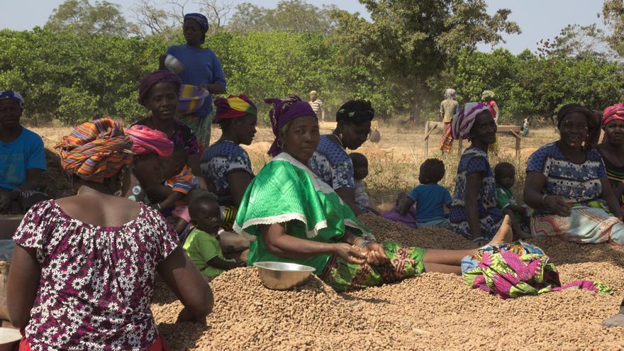 Varias mujeres durante el proceso de producción de chufa africana en Burkina Faso.