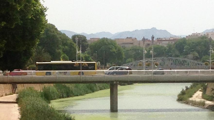 El río Segura, teñido de verde a su paso por Murcia