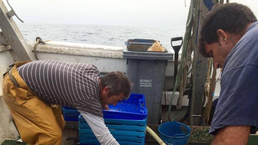 Los pescadores separan los residuos del pescado.