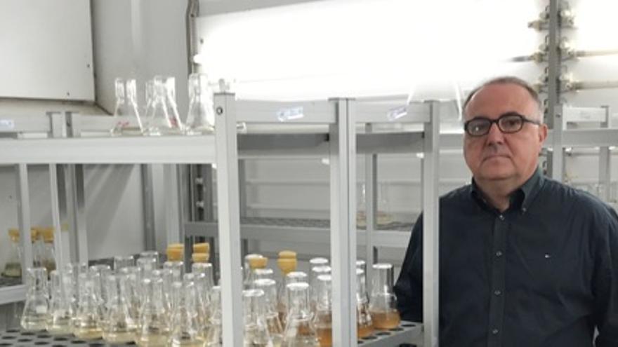 El palmero José Javier Fernández Castro es catedrático del Departamento de Química Orgánica de la Universidad de La Laguna (ULL) y subdirector del Instituto Universitario de Bio-Orgánica Antonio González.
