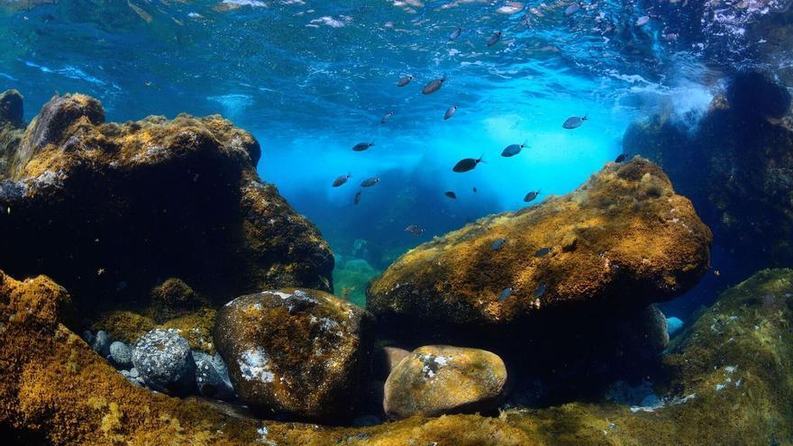 Mar de Las Calmas, en El Hierro
