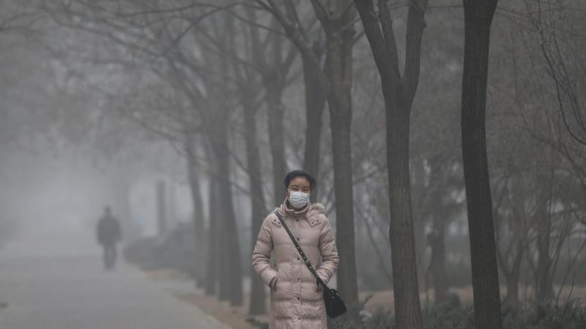 La contaminación causa 10.000 muertes año España y 7 millones en el mundo