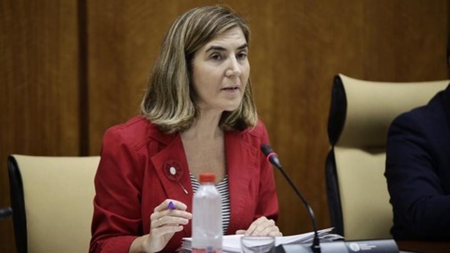Rocío Blanco, consejera de Empleo, en una comisión parlamentaria