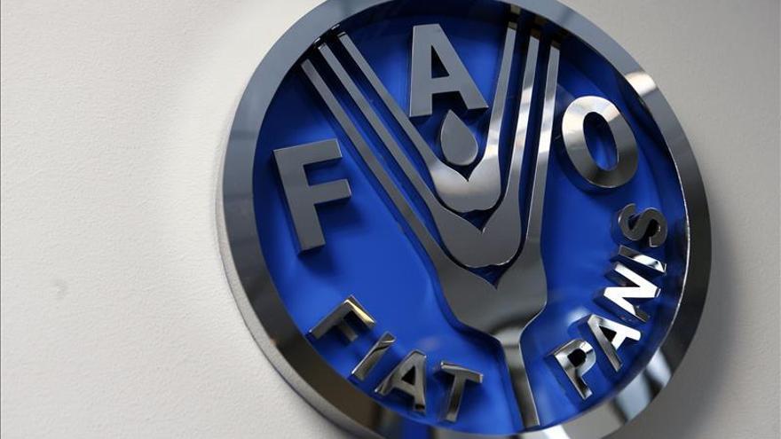 La FAO destaca la protección social de América Latina para reducir el hambre