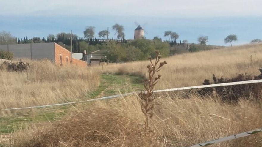 Zona acordonada donde aparecieron los tres perros muertos / IU Belmonte