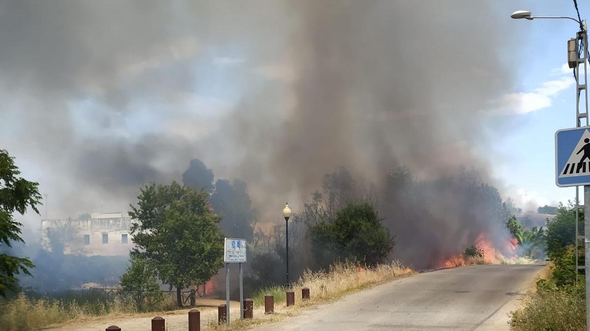 Incendio en la zona del lago y residencial de Proserpina