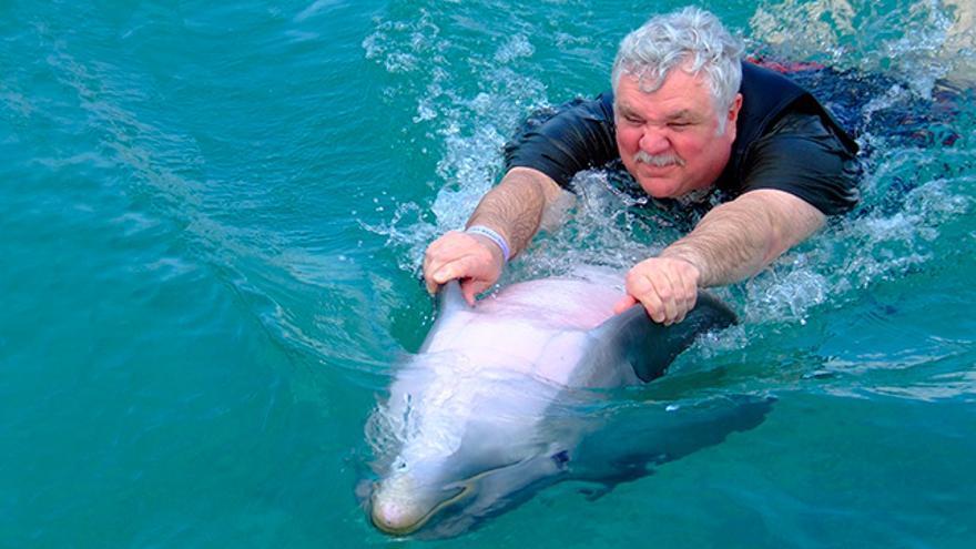 Turismo con delfines