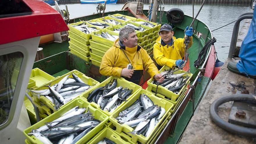 La UE acuerda prohibir la pesca de arrastre a más de 800 metros de profundidad