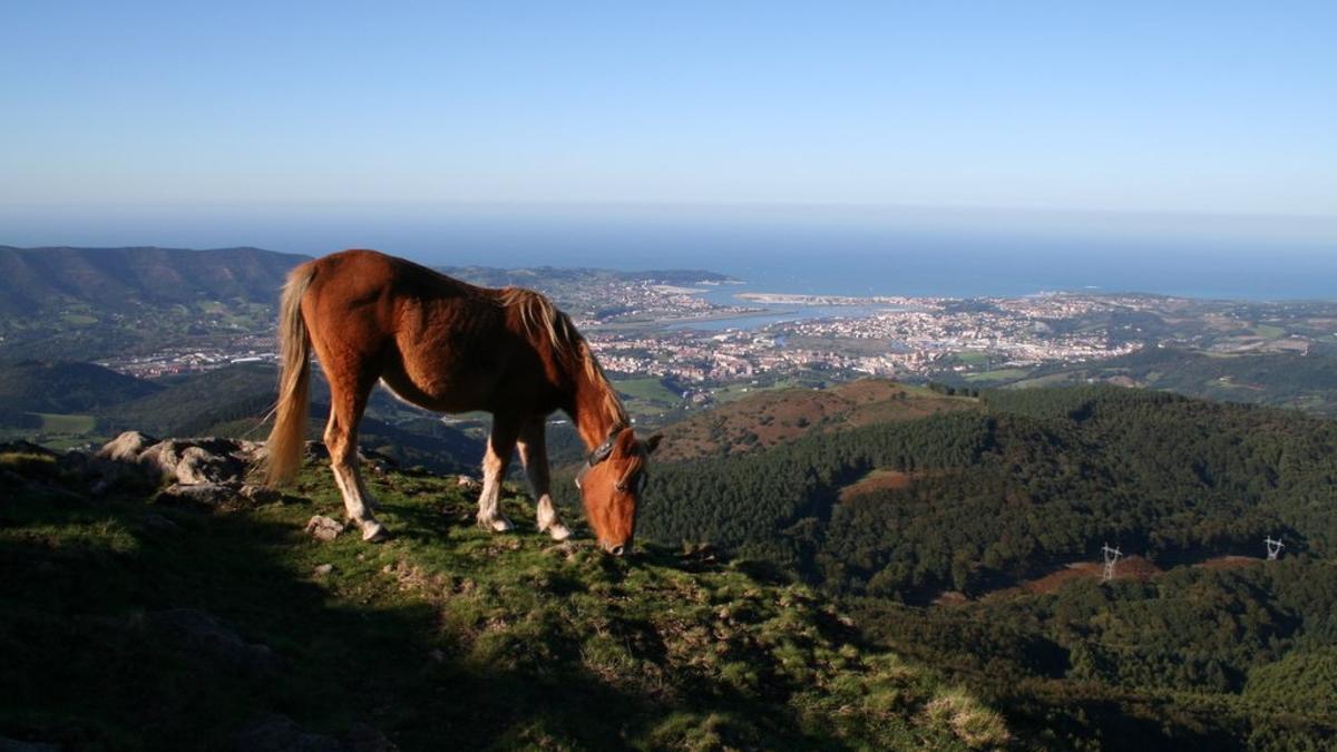 La costa de Donostia desde las alturas de Aiako Harria.