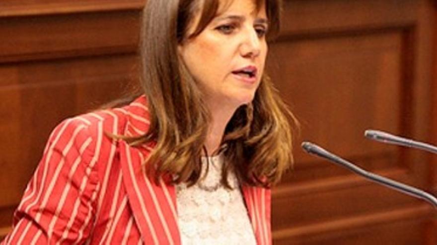 Flora Marrero, en una intervención en su anterior etapa como diputada autonómica