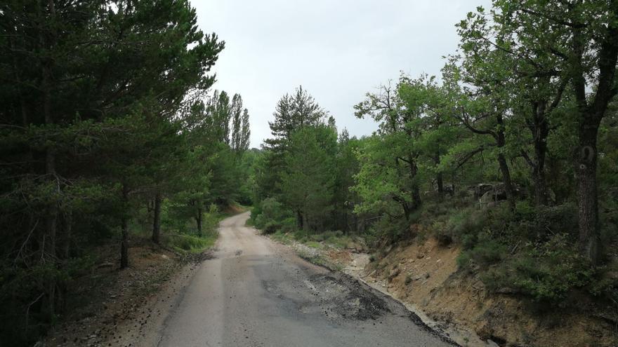 Los daños en la carretera se cifra en más de 8.500 euros