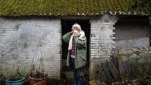 Bente Joergensen vive cerca de una granja porcina, en el pueblo de Tingerup en Dinamarca.