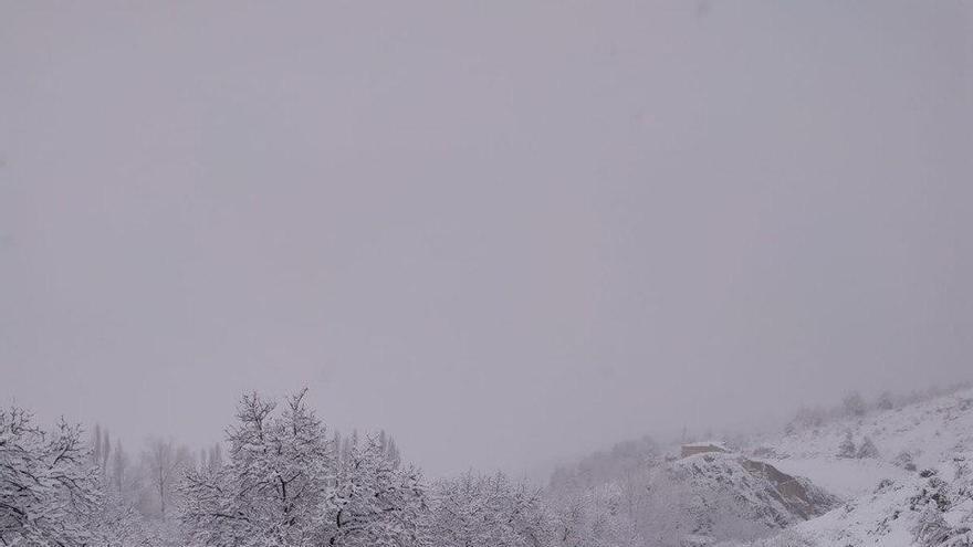 La nieve este lunes en la provincia de Albacete