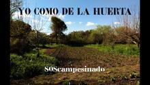 VÍDEO | Gran éxito de la campaña #YoComodelaHuerta, que pide quitar trabas al autoconsumo