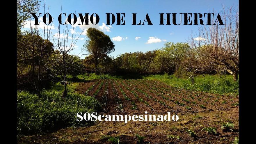 Campaña #YoComoDeLaHuerta