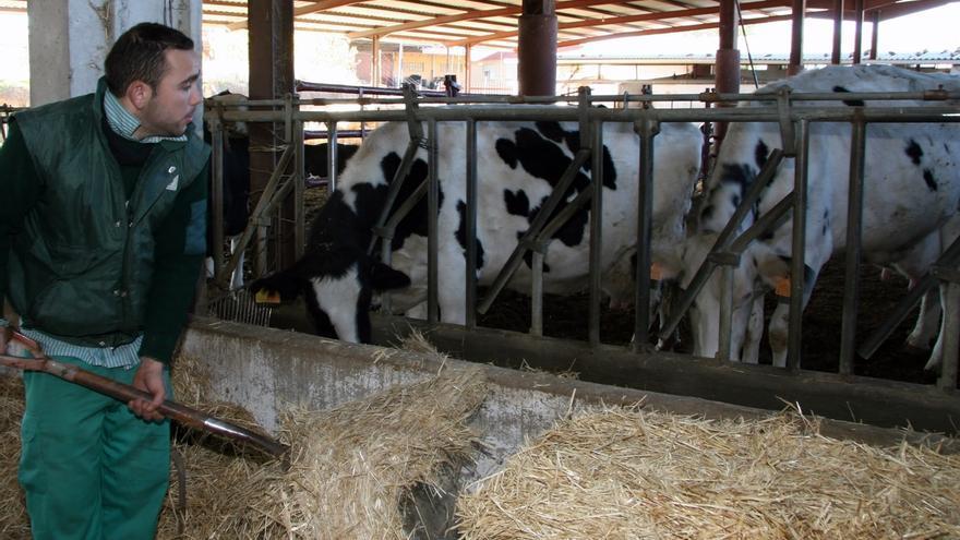 La OPL denuncia que en España desaparecen 2,1 ganaderos al día