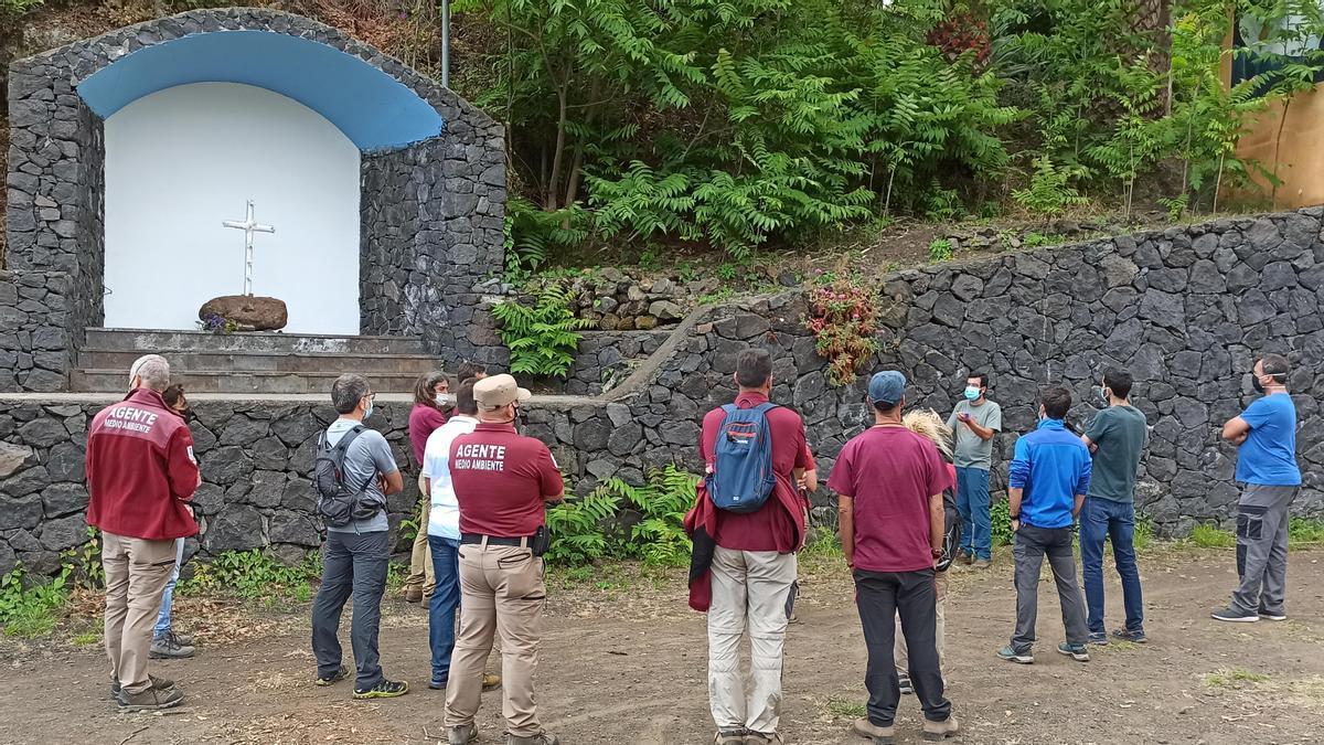 Participantes en el taller de identificación de plantas invasoras o con potencial invasor, vinculado a su participación en el proyecto europeo Life IP Azores Natura con el apoyo del Área de Medio Ambiente y Emergencias del Cabildo Insular de La Palma.