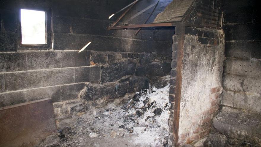 Horno en el que presuntamente son quemadas las perras que ya no sirven al criadero.