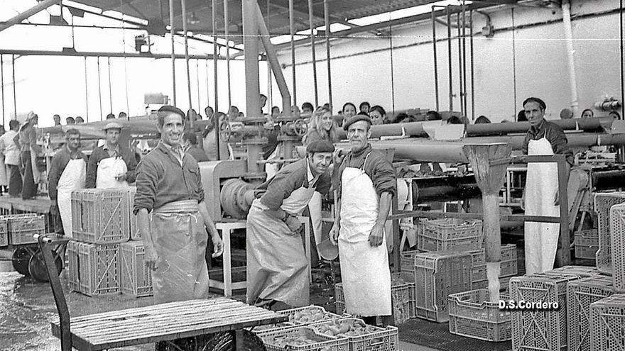 Fábrica de conservas Consiber en Don Benito
