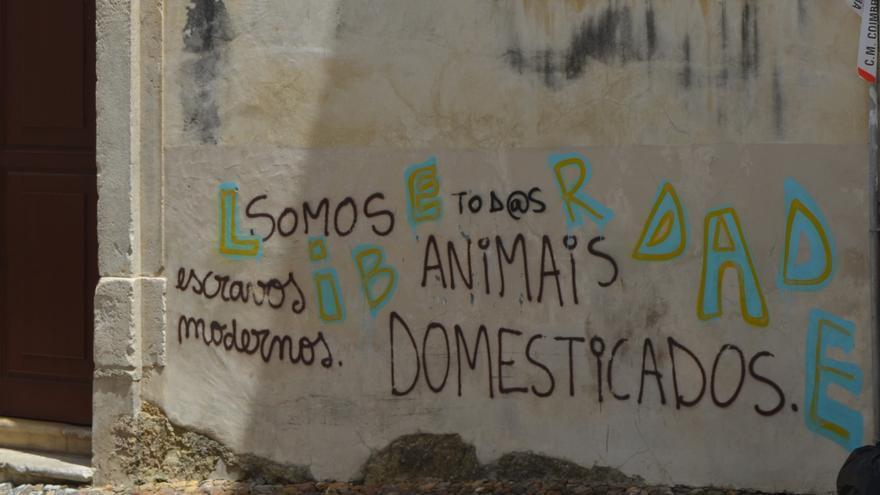Pintada en una calle de Coimbra (Portugal).   Paula Arranz