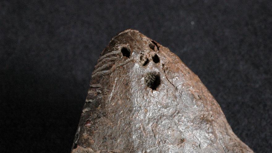En la imagen, rasgos faciales de un idolillo de barro benahoarita. Foto: JORGE PAIS PAIS