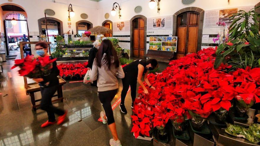 Canarias impone el toque de queda del 23 de diciembre al 10 de enero, desde la 1 de la madrugada a las 6