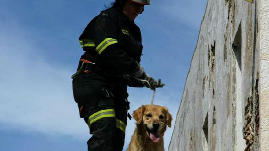 Una voluntaria de IAE con su perro de rescate