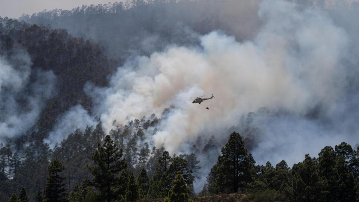 Incendio en Arico