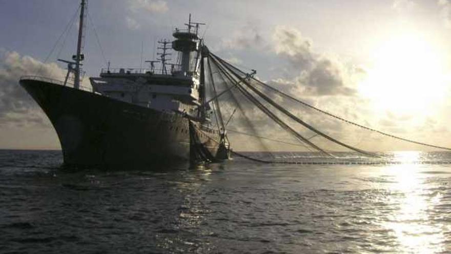 La producción pesquera se ha reducido en algunas regiones hasta un 35%