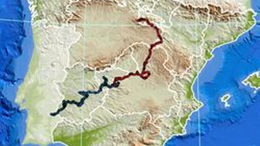 Kahn y Kentaro, dos linces liberados en C-LM, recorren más de un millar de kilómetros y llegan a Portugal y La Rioja