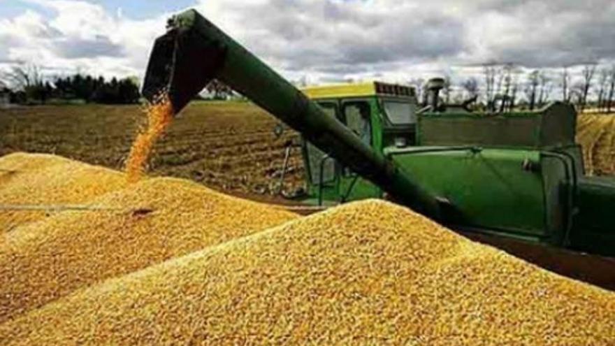 Desde el punto de vista distributivo, los impuestos a la exportación perjudicaron a los propietarios agrícolas, y beneficiaron a los destinatarios del gasto público y a los consumidores de alimentos, sostiene el autor.