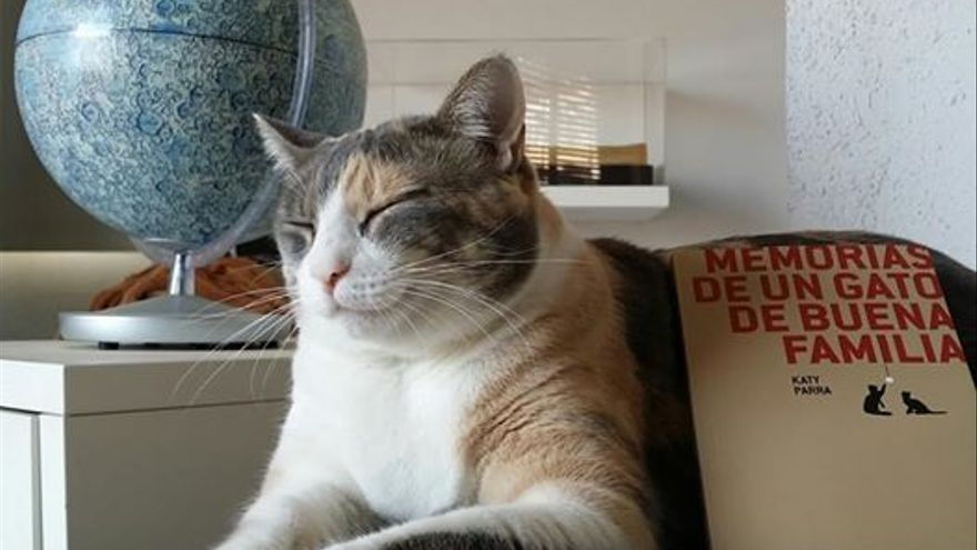 `Memorias de un gato de buena familia´ de Katy Parra