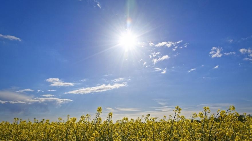 La alerta naranja por temperaturas altas extremas que podrían alcanzar los 39 grados se mantendrán este martes
