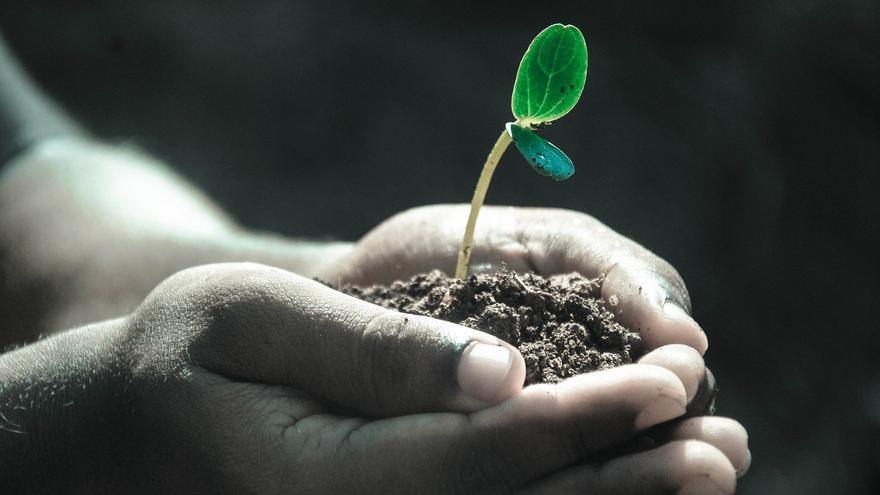ALAS, por una agricultura sostenible
