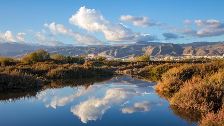 El paraje natural Punta Entinas-Sabinar, en Roquetas de Mar.