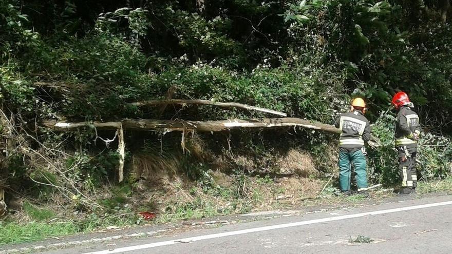 El viento provoca 94 incidencias en municipios costeros de Cantabria