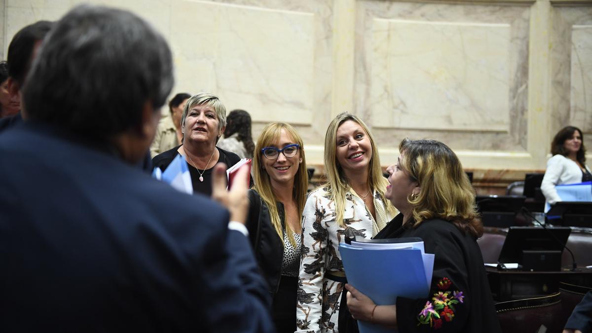 José Mayans (de espaldas) y Anabel Fernández Sagasti junto a senadores del FdT.