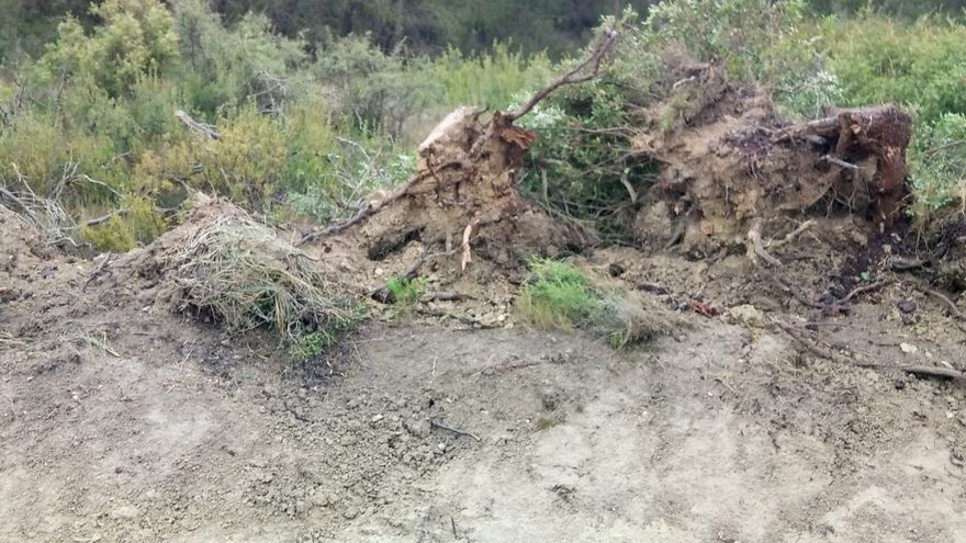Los daños se produjeron en un camino y en una finca agrícola de Gurrea de Gállego