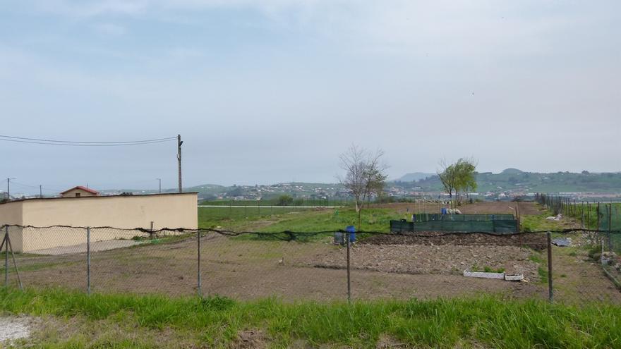 Acondicionada una parcela de los huertos para un proyecto de agricultura ecológica para emprendedores