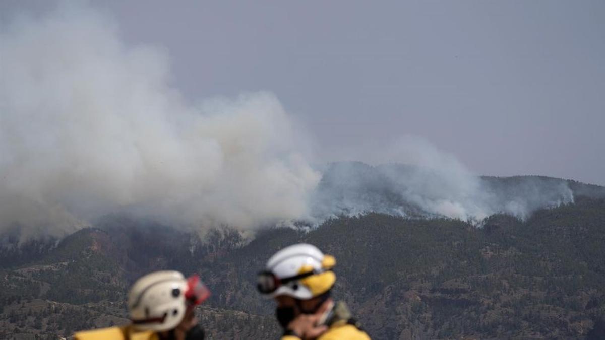 Efectivos de la UME en el incendio de Arico. (EFE)