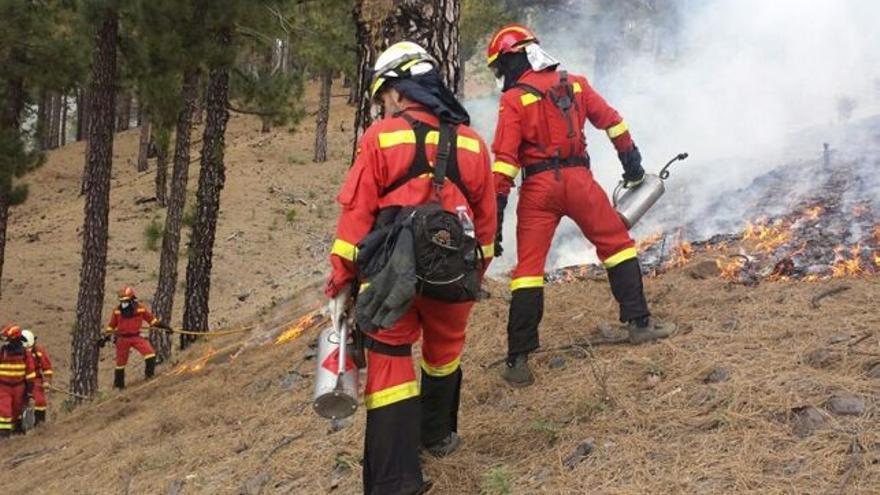 Efectivos de la UME actuando contra el fuego en un pinar de La Palma.