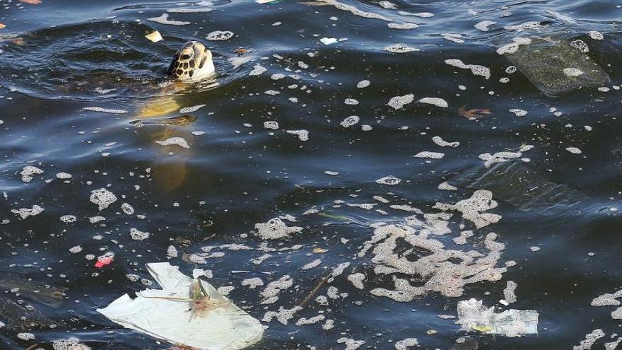 El G20 acuerda crear un marco global para reducir los residuos plásticos marinos