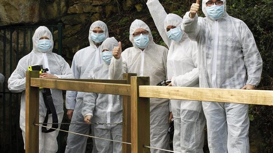 Altamira recibe 250 personas en sus visitas experimentales, que ya terminaron