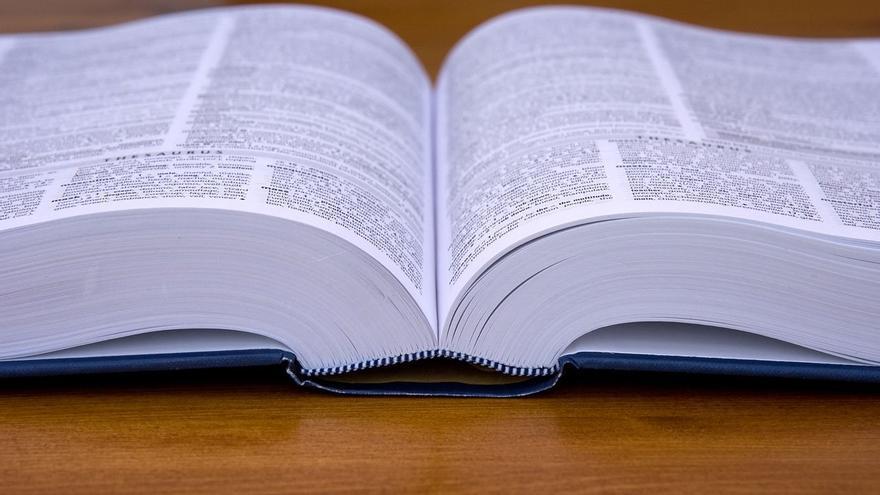 Las nuevas tecnologías han cambiado la forma de los diccionarios, tanto en su confección como en su contenido (Imagen: Pixabay)