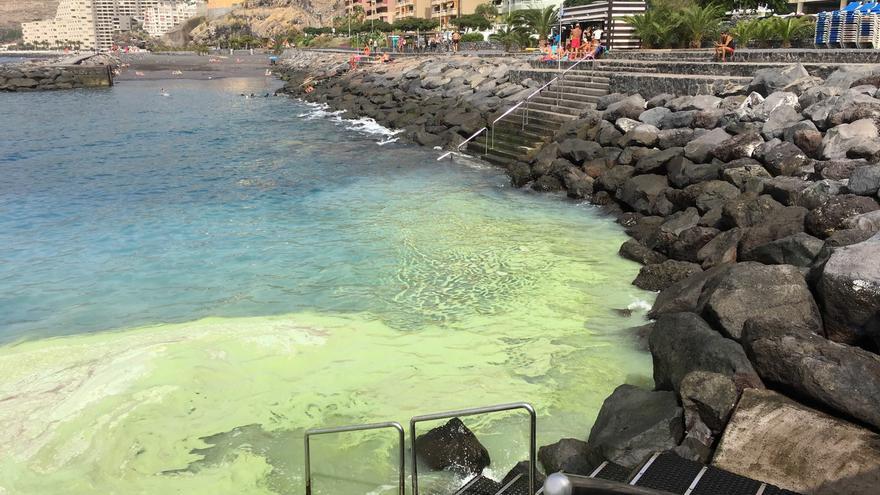 Concentración de microalgas junto a un dique en Radazul, este sábado (26-08-2017)