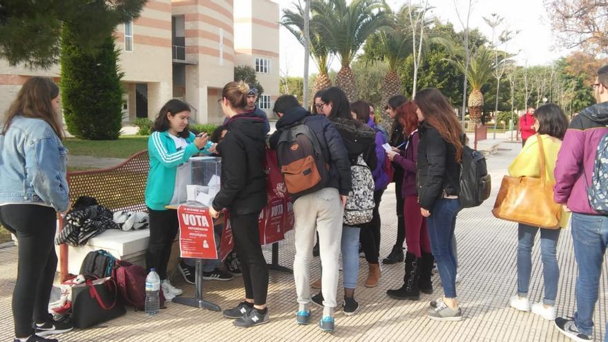 Un momento de la consulta realizada en la Universidad de Alicante