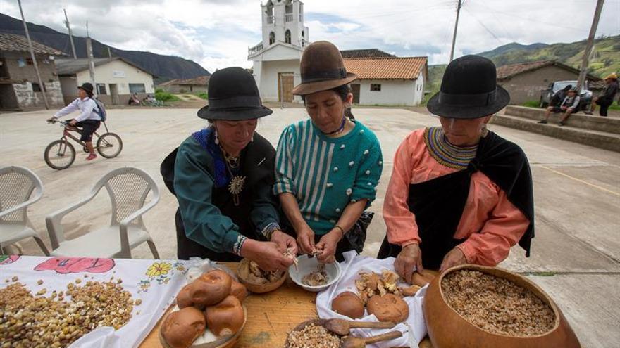 """Guajango: Un medicinal """"tequila"""" que aviva la fiesta en los Andes de Ecuador"""