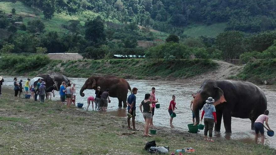 Elefantes en Chiang May, Tailandia. Foto: Soraya Montero/Flickr